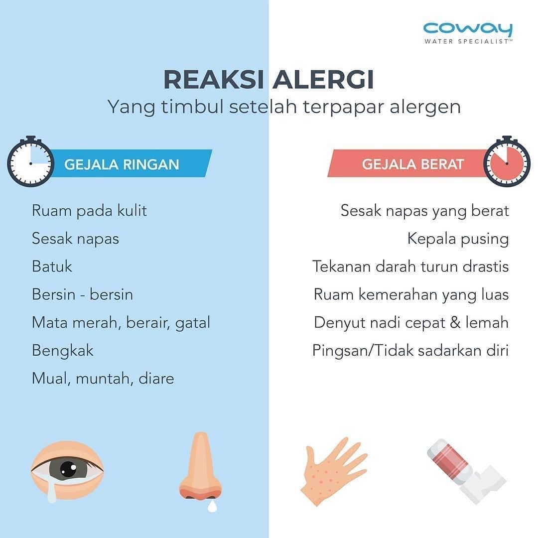 Coway Jakarta - 1617845839 268 Alergi dapat timbul karena beberapa faktor salah satunya kualitas udara