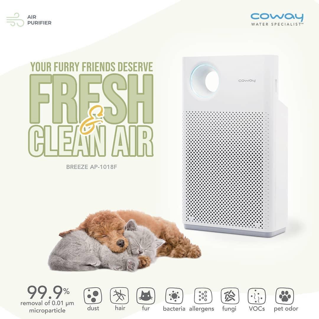 Coway Jakarta - Jika kamu memiliki hewan peliharaan di rumah maka memiliki Air